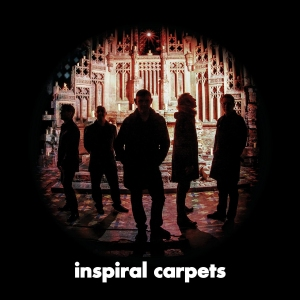 review marmozet carpetsB x1 cong