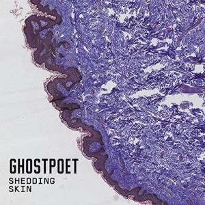 review ghostpoet x1 cong