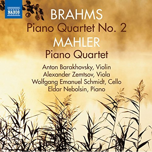 review brahms x1 cong