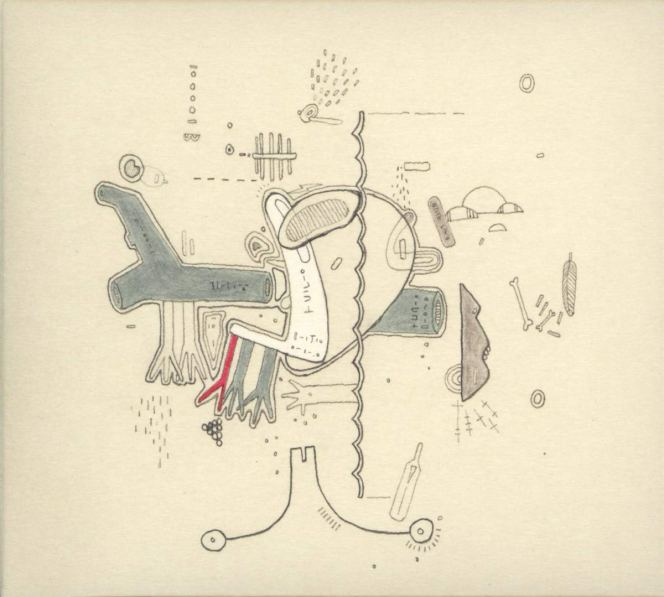 review frightened rabbit x1 cong